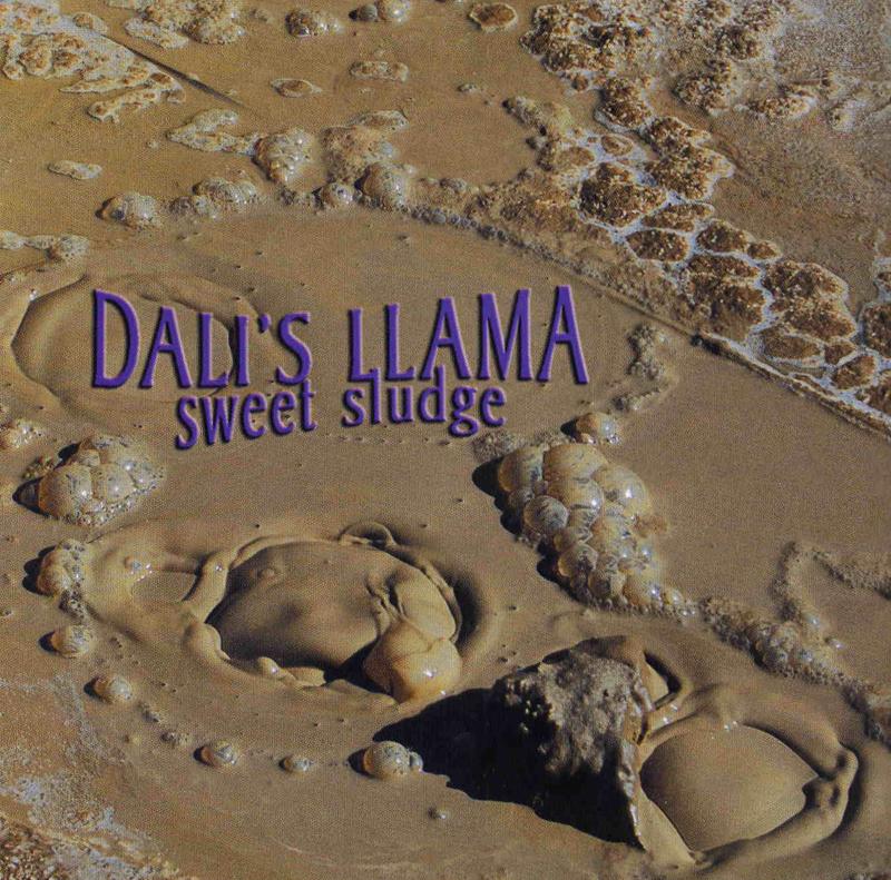 dalis llama Sludge