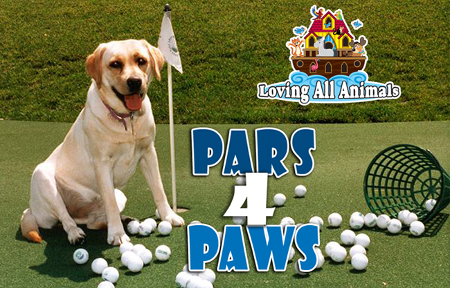 Pars4Paws