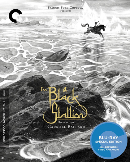Black Stallion Blu-ray
