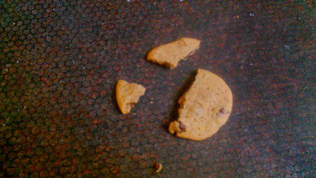 cookie-on-floor