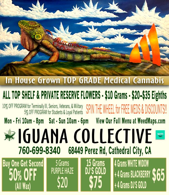 iguana_webad-031617