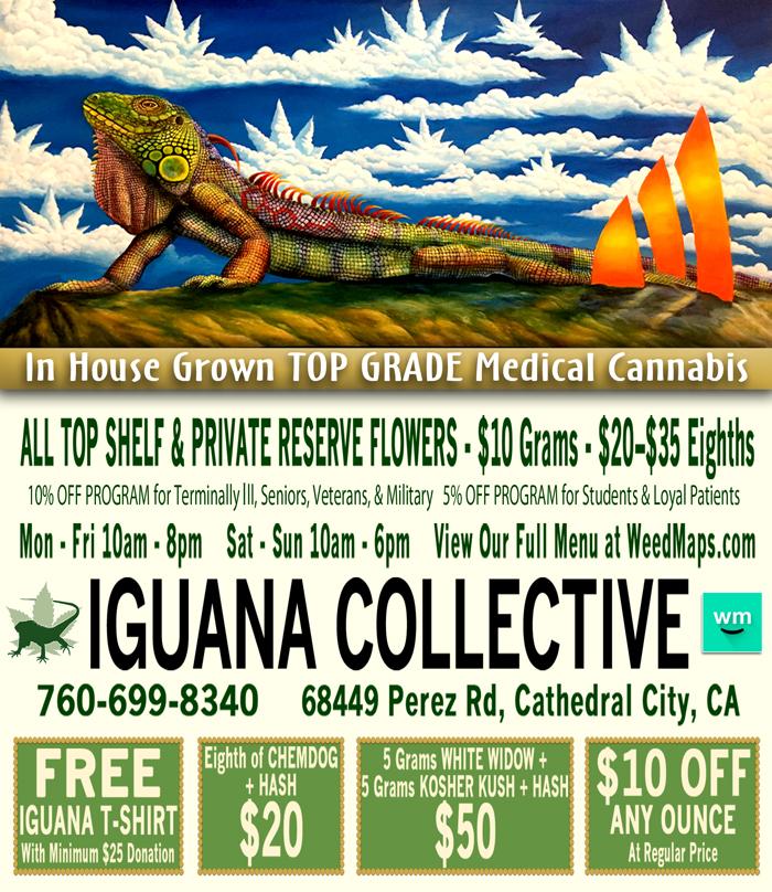 iguana_webad-032317