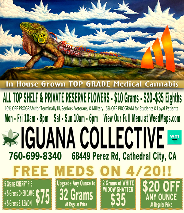 iguana_webad-033017