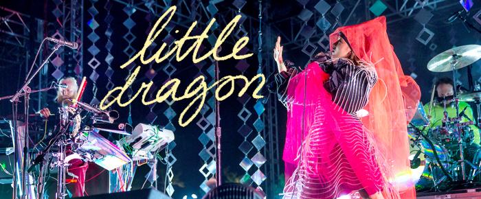 fp_little-dragon