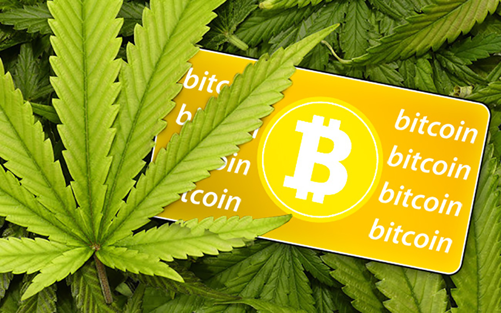 Bitcoins and Cannabis Investing | Coachella Valley Weekly